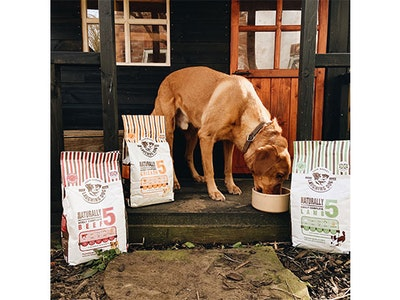 6 months worth of dog food sweepstakes