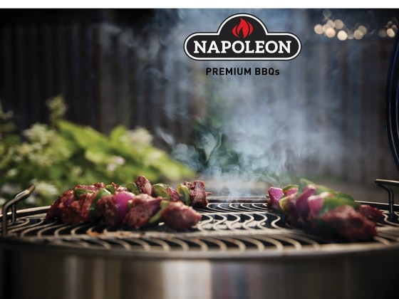Napoleon barbecue starter set sweepstakes