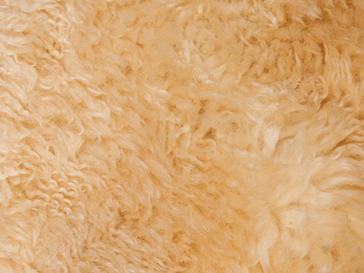 Win a AUFELL Faux Sheepskin Rug sweepstakes