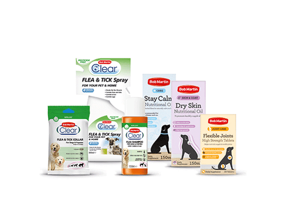 WIN a £40 Bob Martin winter wellbeing hamper to keep your pet in the finest of fettle sweepstakes