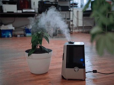 Win a Ultrasonic Cool Mist Humidifier sweepstakes