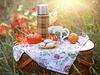WIN a VonShef 2 Person Picnic Basket  sweepstakes