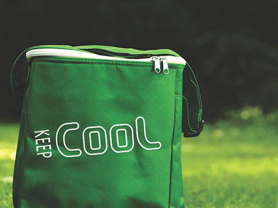 Win a Outdoor Cooler Bag sweepstakes