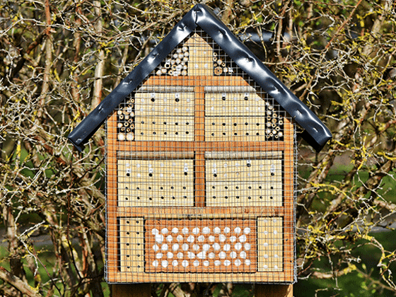 Win a Beehive Bee House sweepstakes