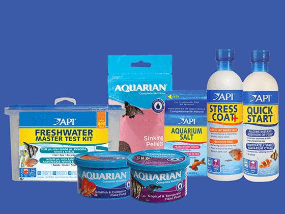 Win a £150 Fish Care Bundle Courtesy of Mars Fishcare! sweepstakes