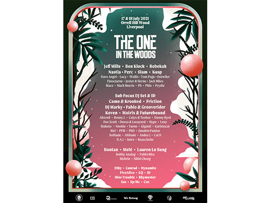 Win tickets to The One In The Woods fesitval sweepstakes